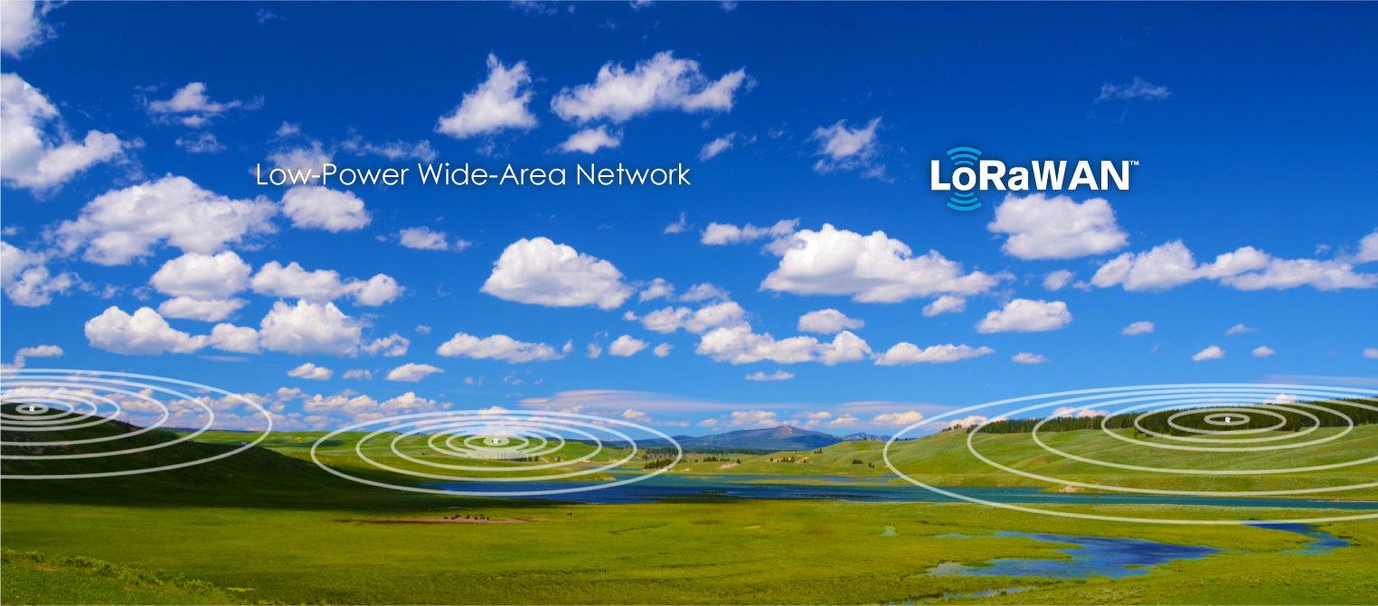 免許不要、半径5kmの長距離通信<br> 超低消費電力で数年間電池交換不要<br> LoRaWANはIoTに最適なワイヤレス通信技術です